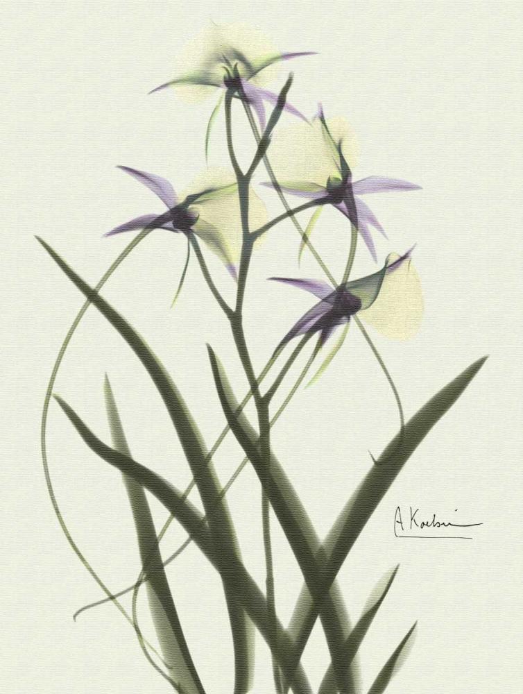 konfigurieren des Kunstdrucks in Wunschgröße Orchids a Plenty in Purple on Beige von Koetsier, Albert