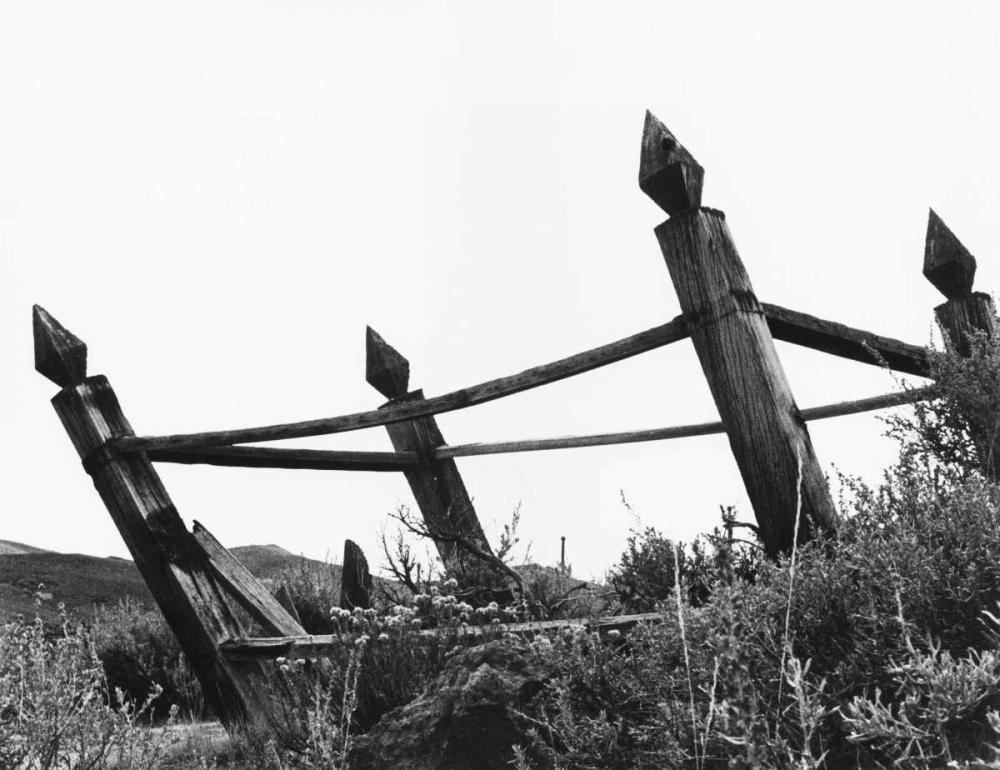 konfigurieren des Kunstdrucks in Wunschgröße The Bodi Fence von Koetsier, Albert