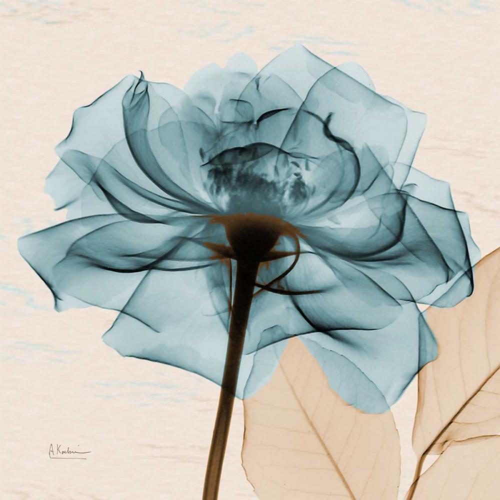 konfigurieren des Kunstdrucks in Wunschgröße Teal Rose von Koetsier, Albert