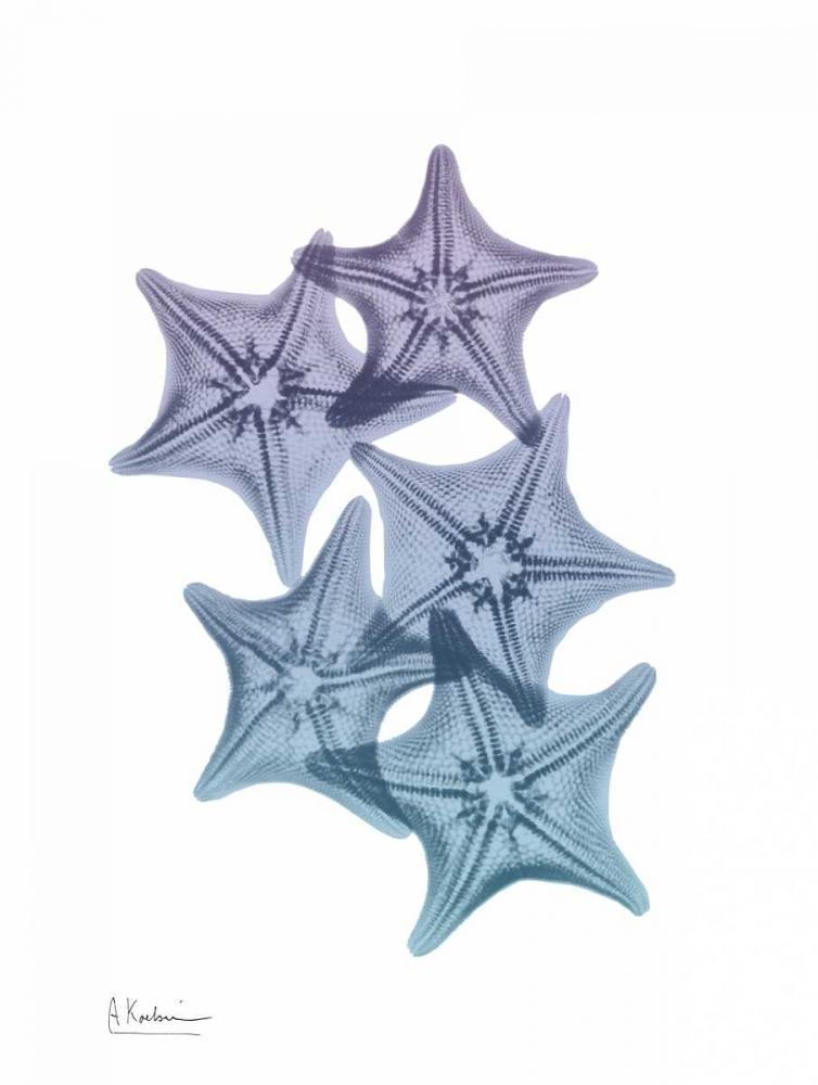 konfigurieren des Kunstdrucks in Wunschgröße Lavender Splashed Starfish 1 von Koetsier, Albert