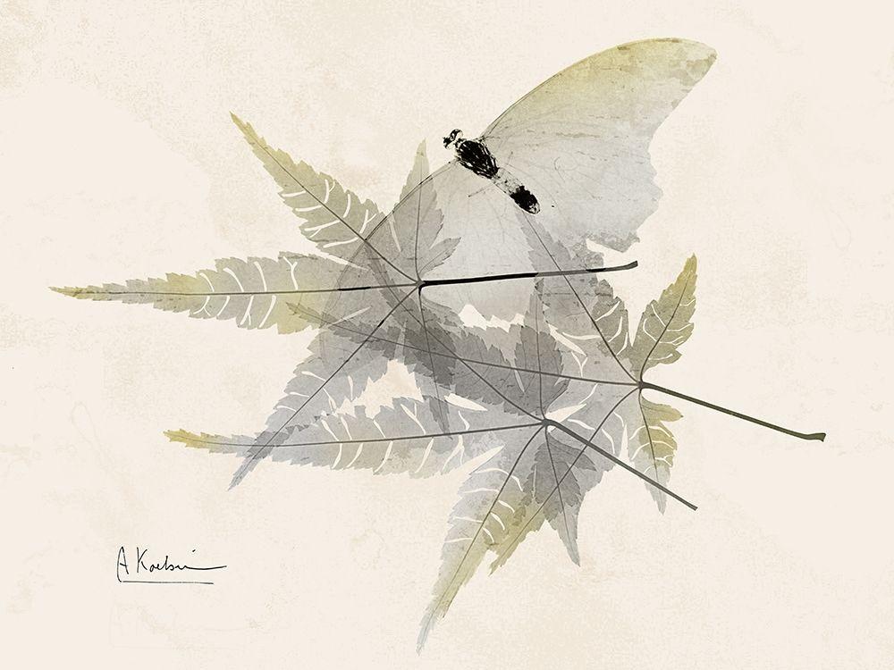 konfigurieren des Kunstdrucks in Wunschgröße Sunny Flight von Koetsier, Albert
