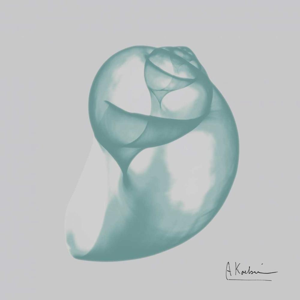 konfigurieren des Kunstdrucks in Wunschgröße Aquifer Water Snail von Koetsier, Albert