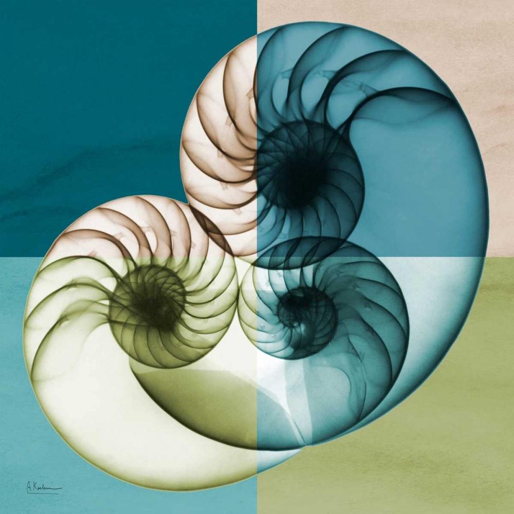 konfigurieren des Kunstdrucks in Wunschgröße Blue Green Shell 2 von Koetsier, Albert