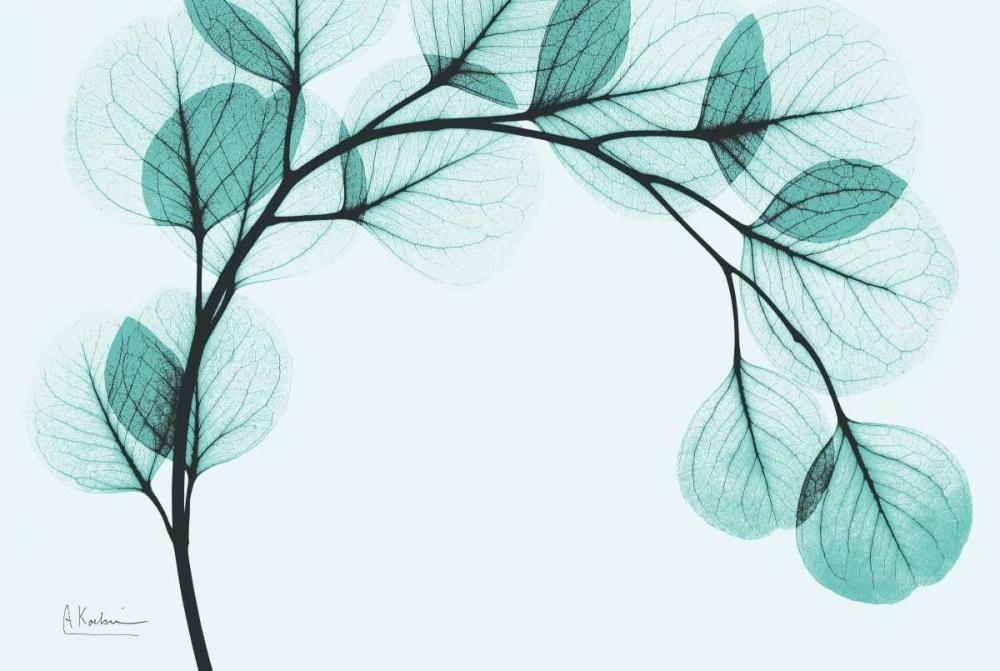 konfigurieren des Kunstdrucks in Wunschgröße Teal Eucalyptus von Koetsier, Albert