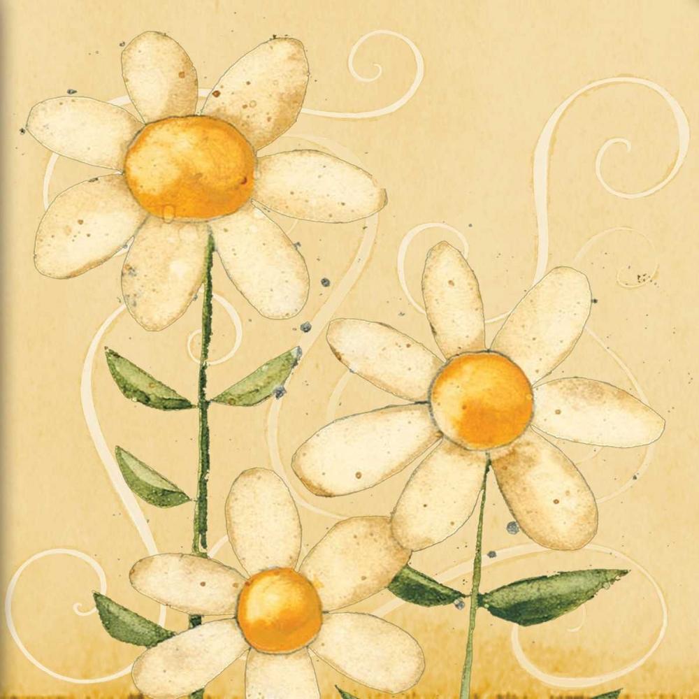 konfigurieren des Kunstdrucks in Wunschgröße Spring Floral von DiPaolo, Dan