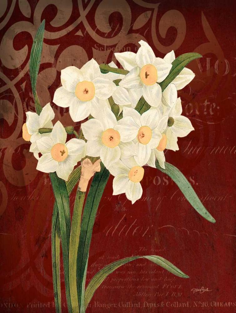 konfigurieren des Kunstdrucks in Wunschgröße Narcissus 1 von Stimson, Diane