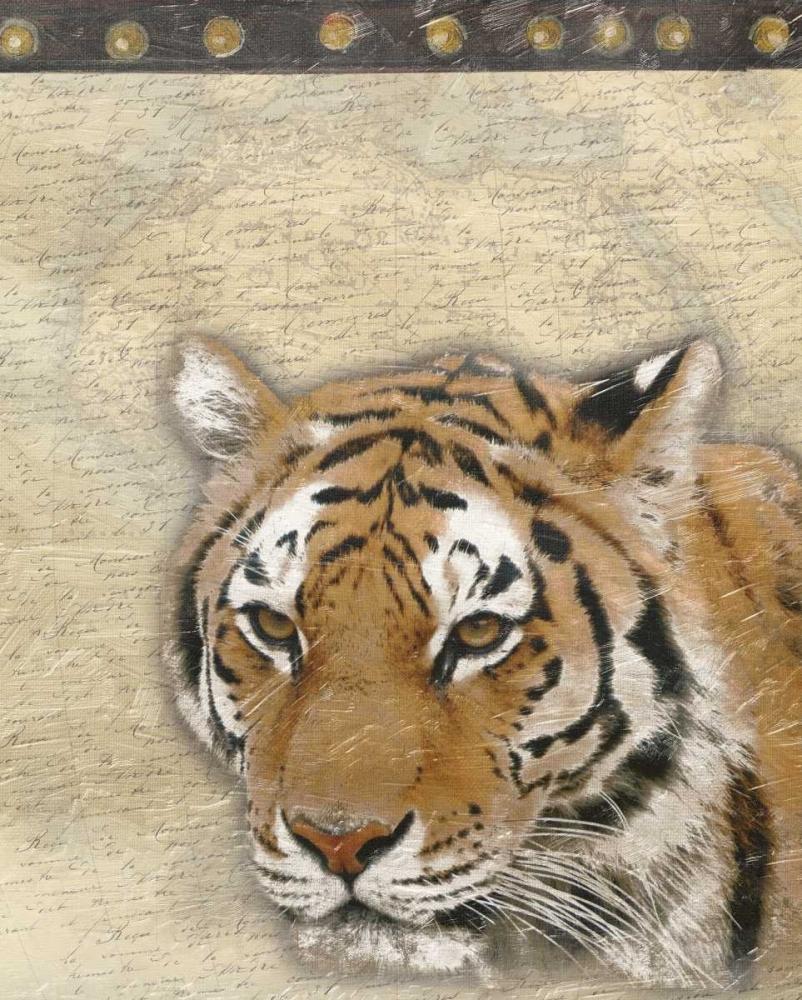 konfigurieren des Kunstdrucks in Wunschgröße Tiger Africa 2 von Grey, Jace