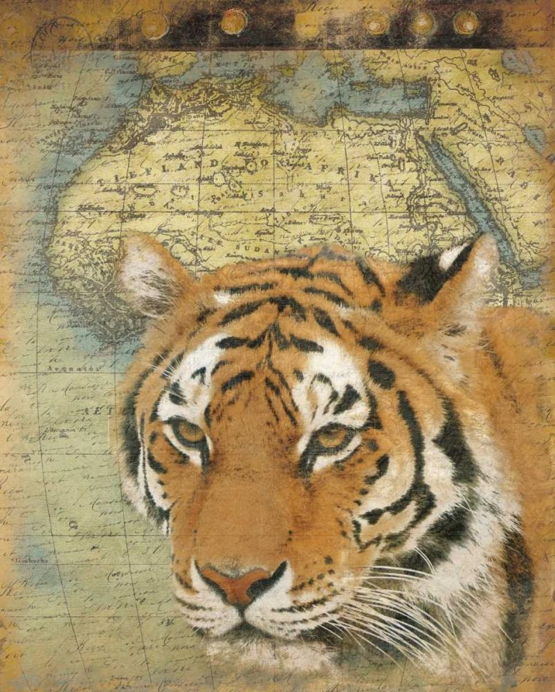 konfigurieren des Kunstdrucks in Wunschgröße Tiger Africa von Grey, Jace