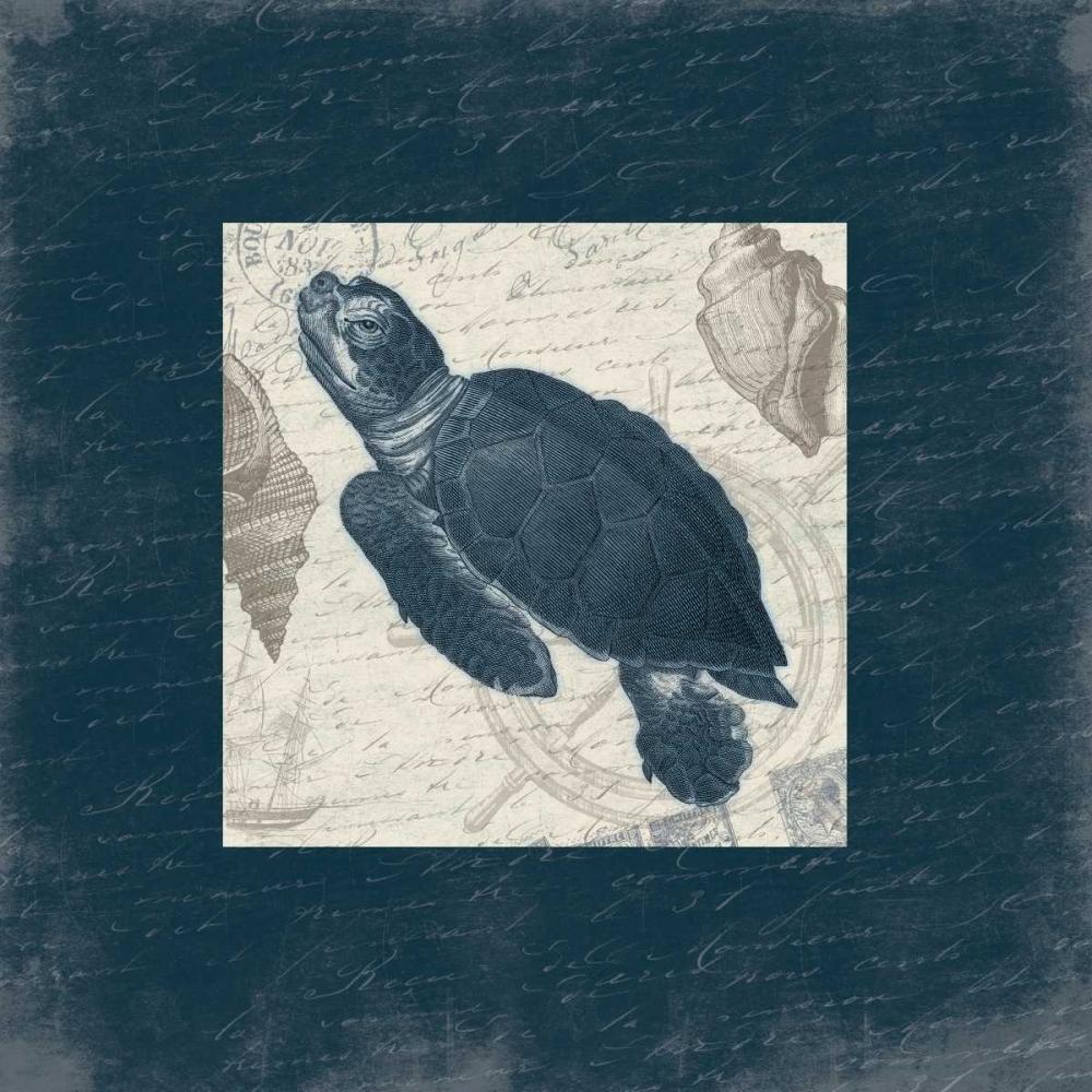 konfigurieren des Kunstdrucks in Wunschgröße Turtle Bordered von Grey, Jace