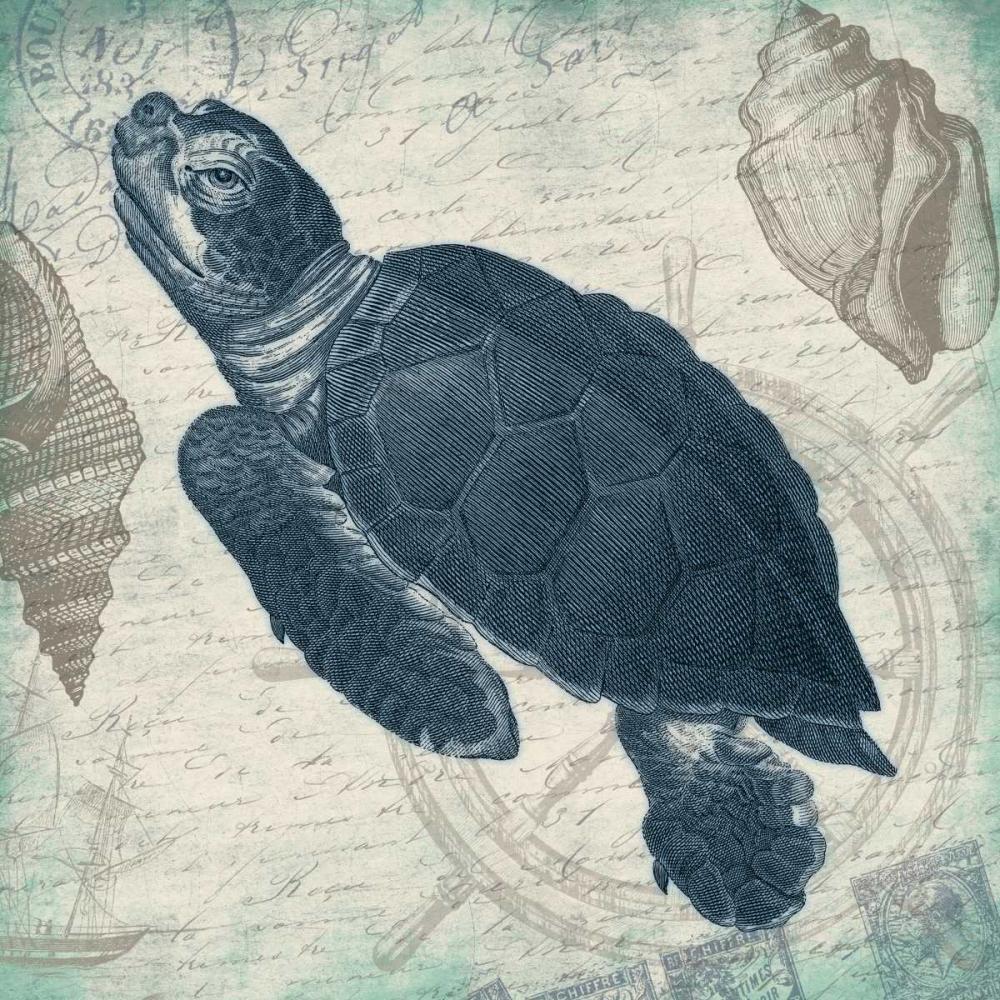 konfigurieren des Kunstdrucks in Wunschgröße Turtle von Grey, Jace