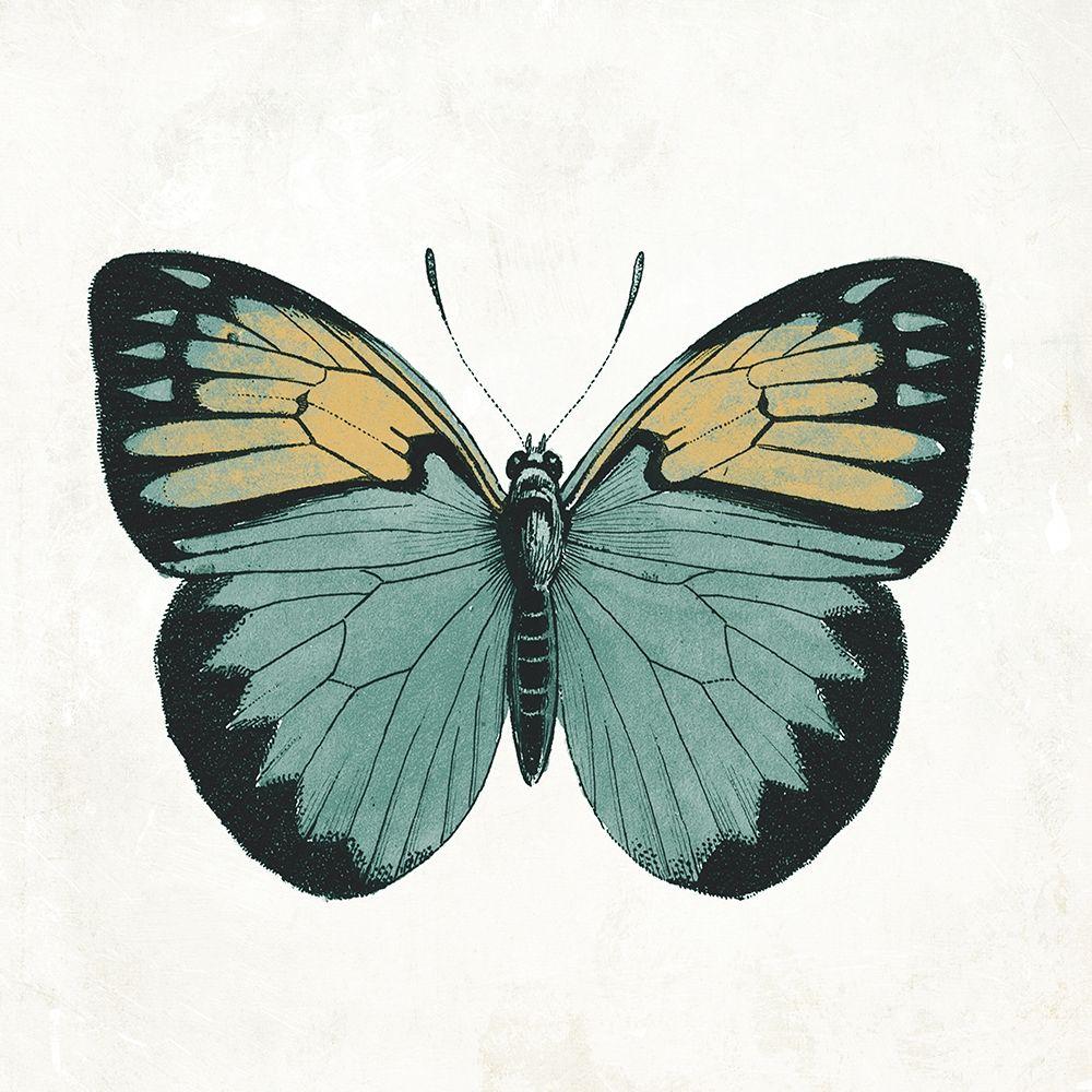 konfigurieren des Kunstdrucks in Wunschgröße Neutral Butterfly 3 von Grey, Jace