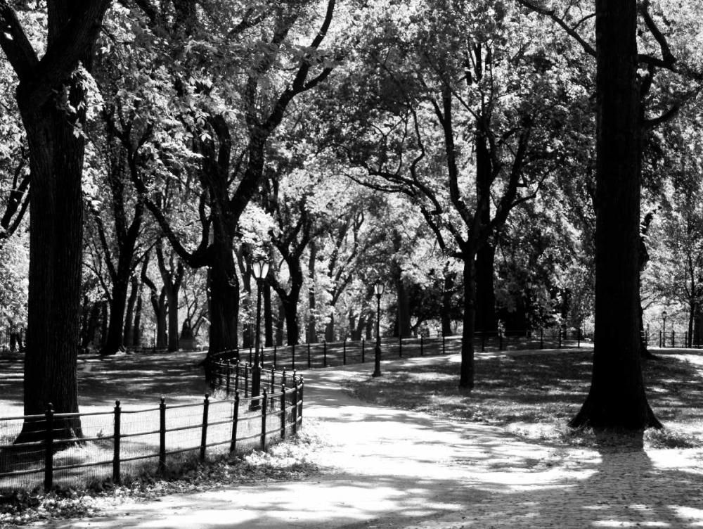 konfigurieren des Kunstdrucks in Wunschgröße Central Park Walk von Pica, Jeff