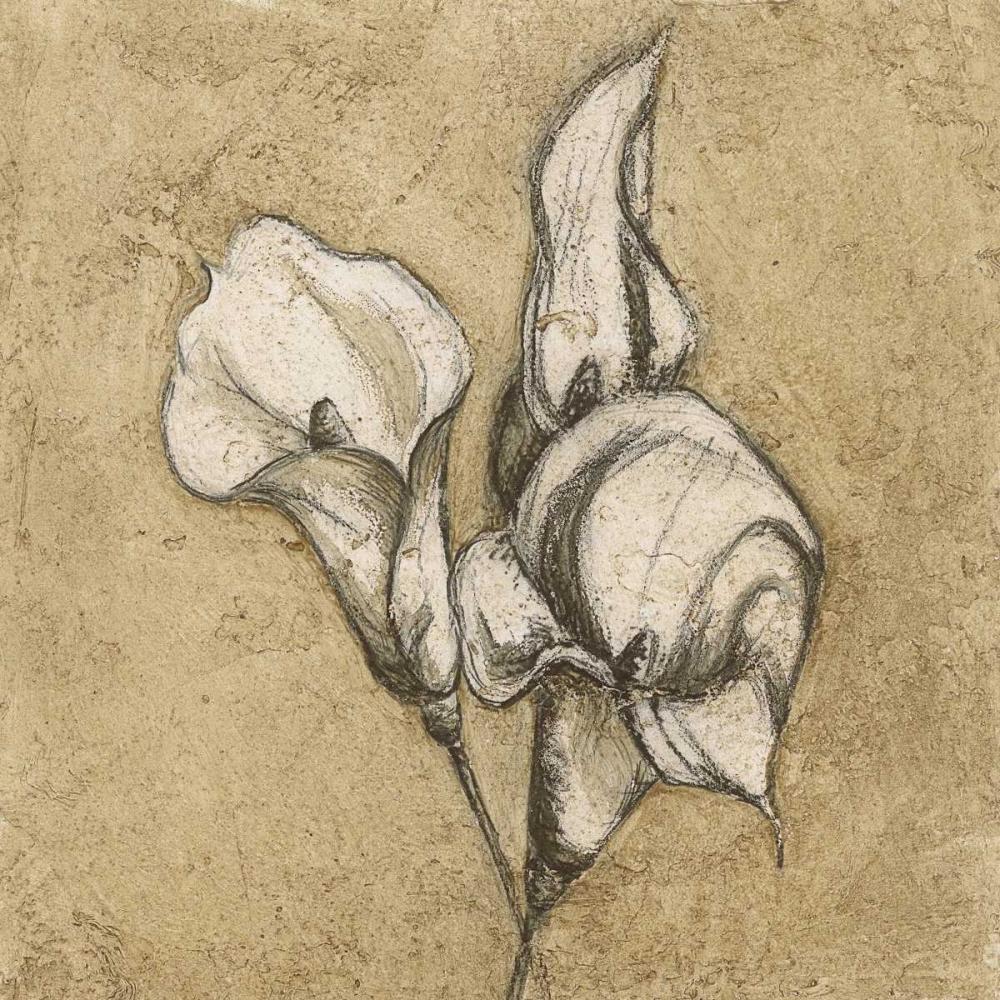 konfigurieren des Kunstdrucks in Wunschgröße Calla Lily III von Emery, Kristin