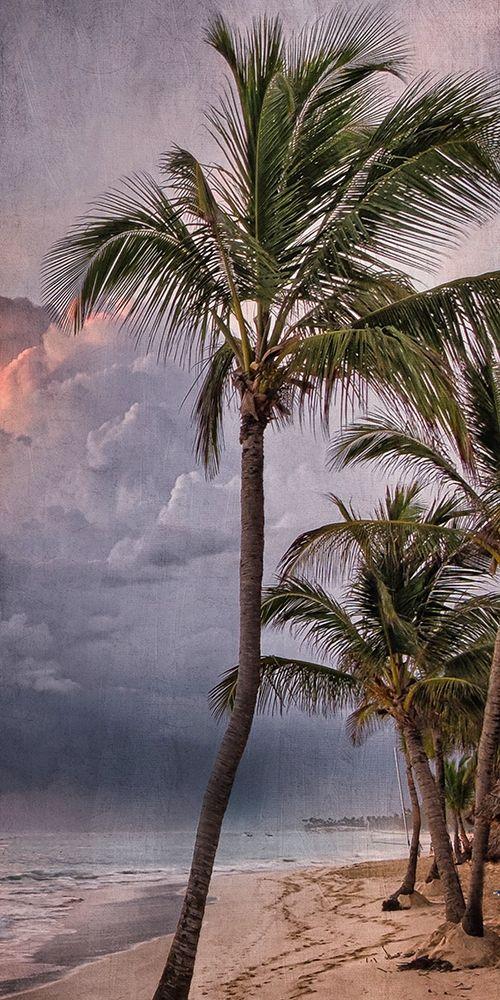 konfigurieren des Kunstdrucks in Wunschgröße Morning Sea Breeze von