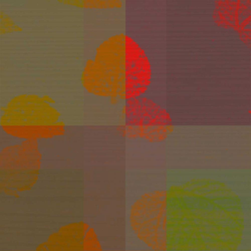 konfigurieren des Kunstdrucks in Wunschgröße Placid von Pazan, Tony