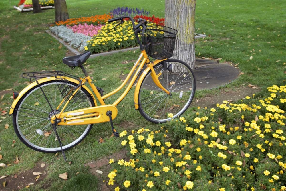 konfigurieren des Kunstdrucks in Wunschgröße Japan Bicycle - 1 von Blaustein, Alan