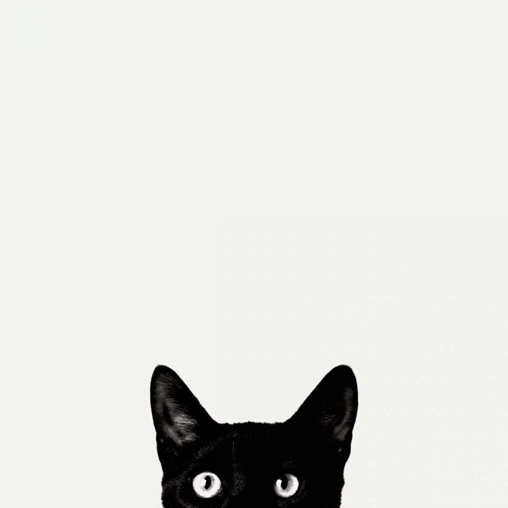 Sammlung Black and White ansehen