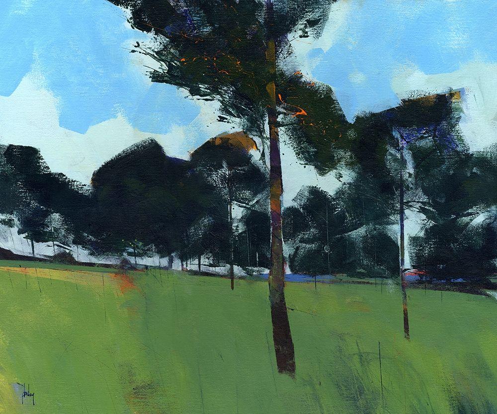 konfigurieren des Kunstdrucks in Wunschgröße Moorland Pines von Bailey, Paul