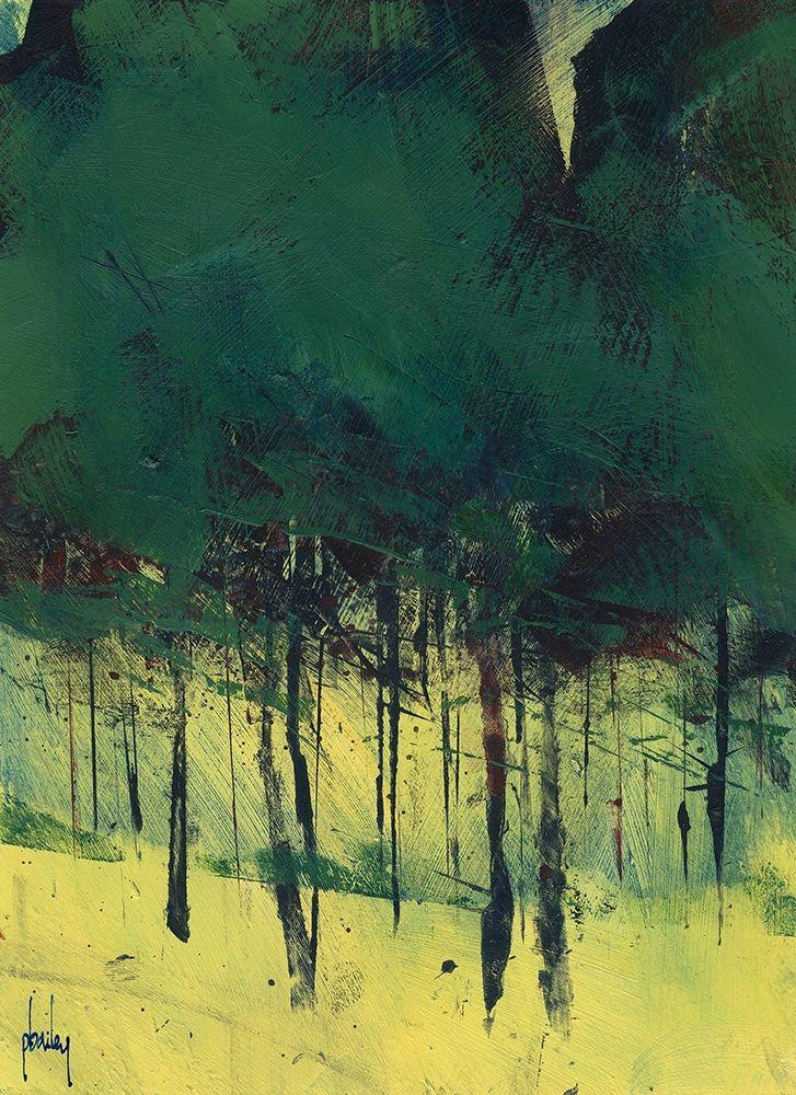 konfigurieren des Kunstdrucks in Wunschgröße Pine Copse von Bailey, Paul