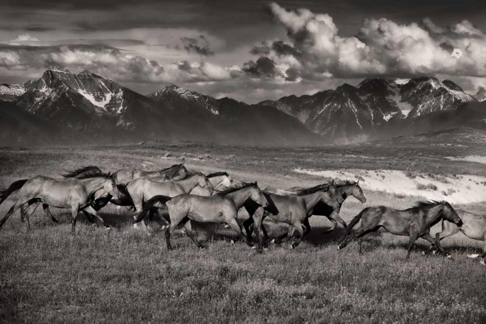 konfigurieren des Kunstdrucks in Wunschgröße Mountain Range Mavericks von Dearing, Lisa