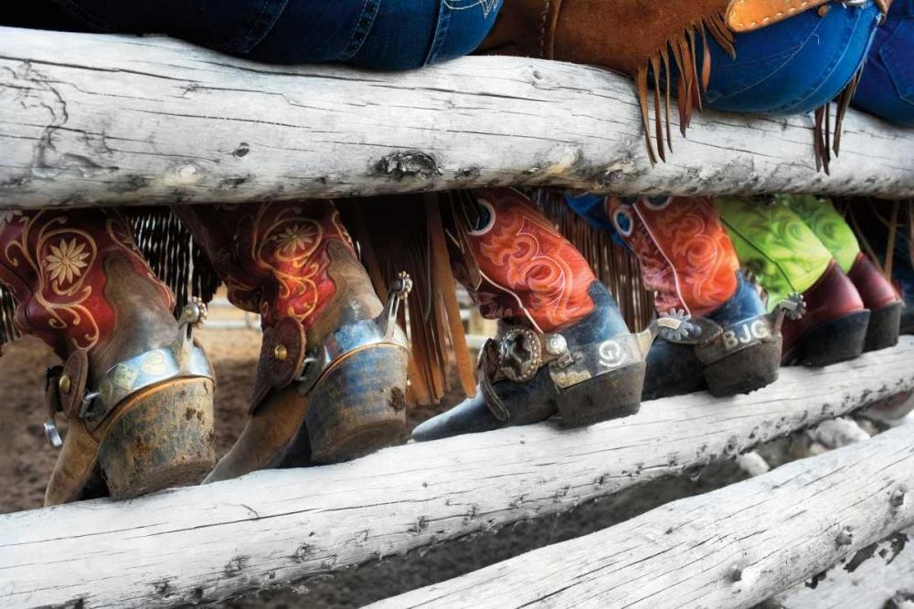 konfigurieren des Kunstdrucks in Wunschgröße Boots and Spurs von Dearing, Lisa