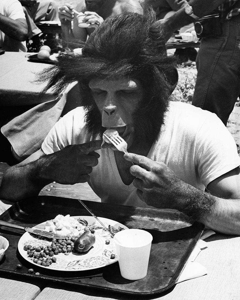 konfigurieren des Kunstdrucks in Wunschgröße Even Apes Need a Break von Unknown