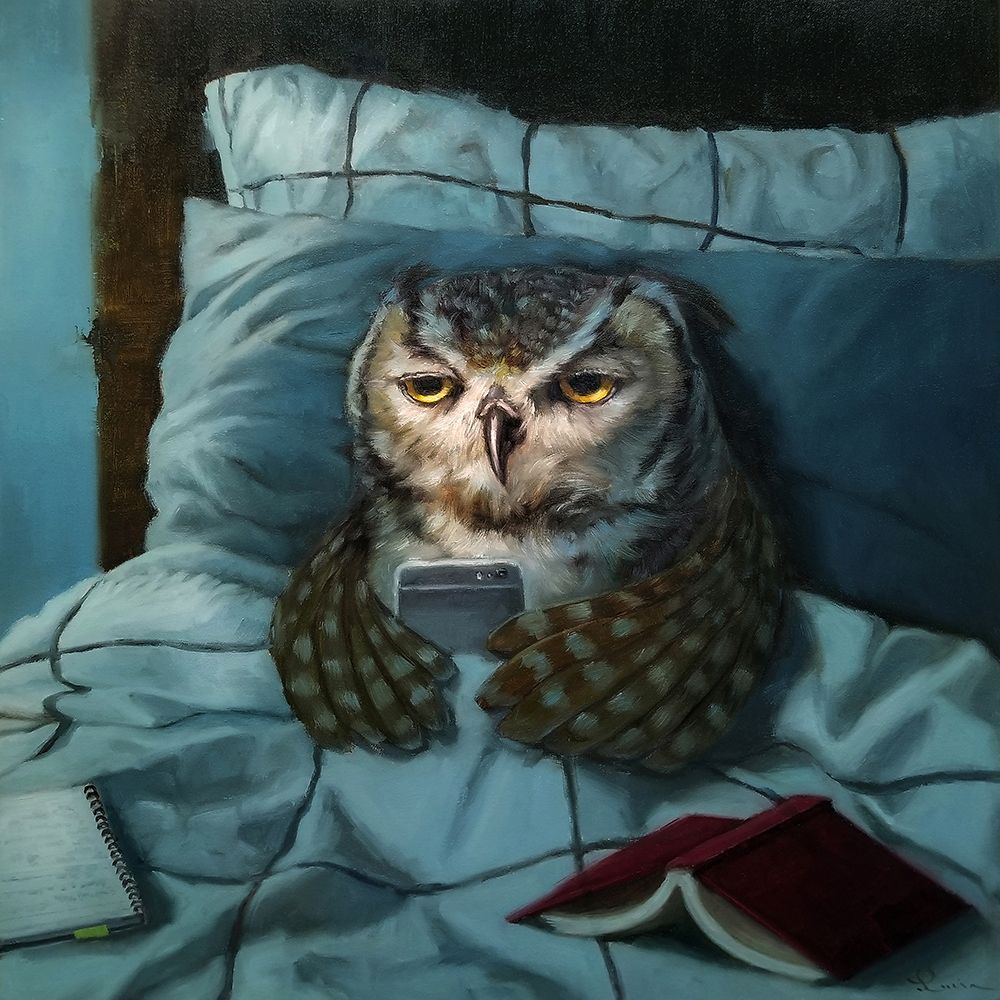 konfigurieren des Kunstdrucks in Wunschgröße Night Owl von Heffernan, Lucia