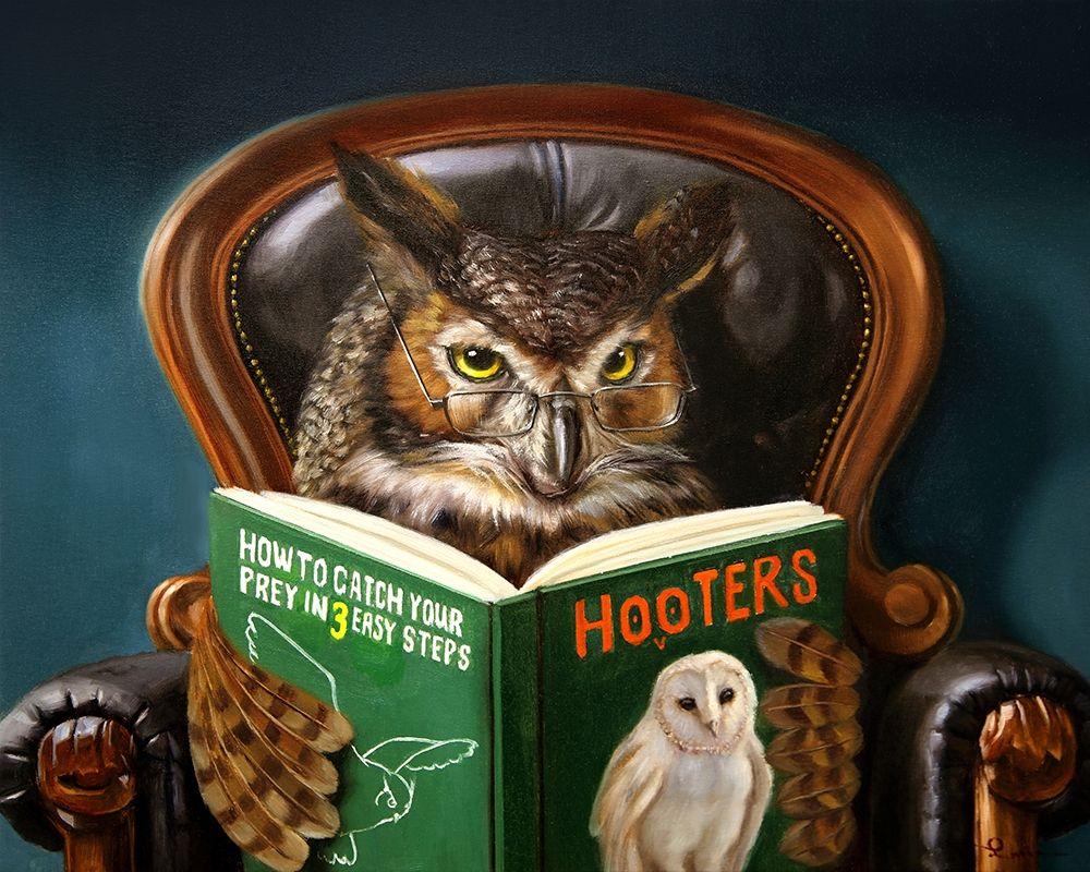 konfigurieren des Kunstdrucks in Wunschgröße Owl Porn von Heffernan, Lucia