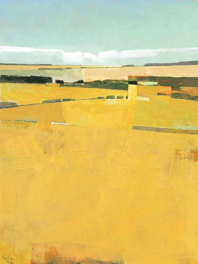 konfigurieren des Kunstdrucks in Wunschgröße Fence Lines and Fields von Hargreaves, Greg