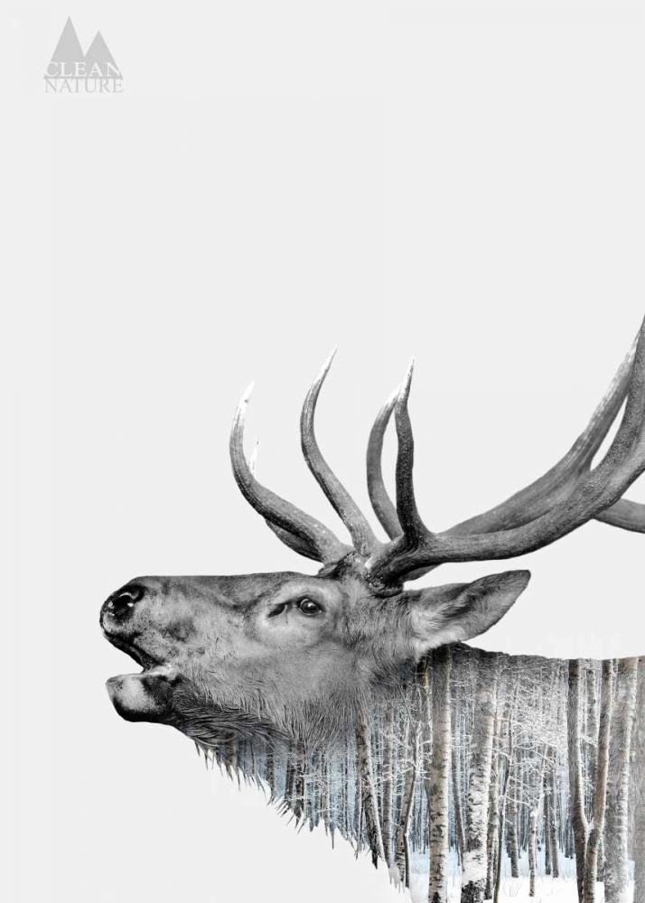 konfigurieren des Kunstdrucks in Wunschgröße Deer von Clean Nature