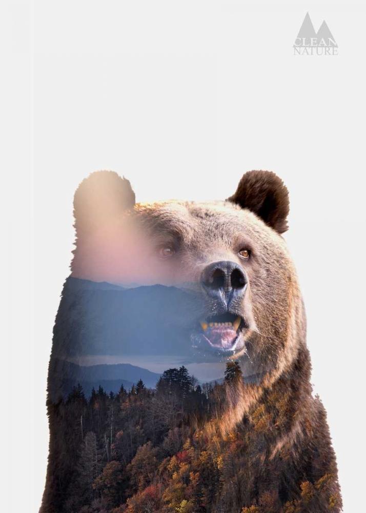 konfigurieren des Kunstdrucks in Wunschgröße Bear von Clean Nature