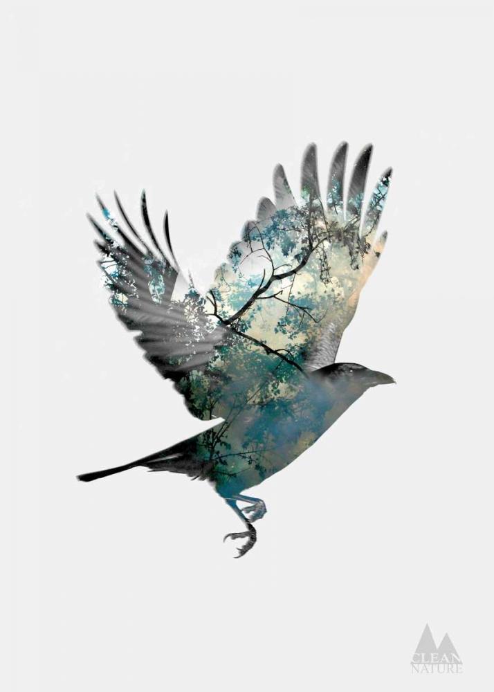 konfigurieren des Kunstdrucks in Wunschgröße Bird von Clean Nature