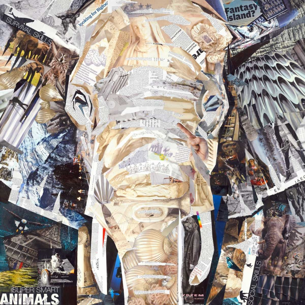 konfigurieren des Kunstdrucks in Wunschgröße Elephants Gaze von Grey, James