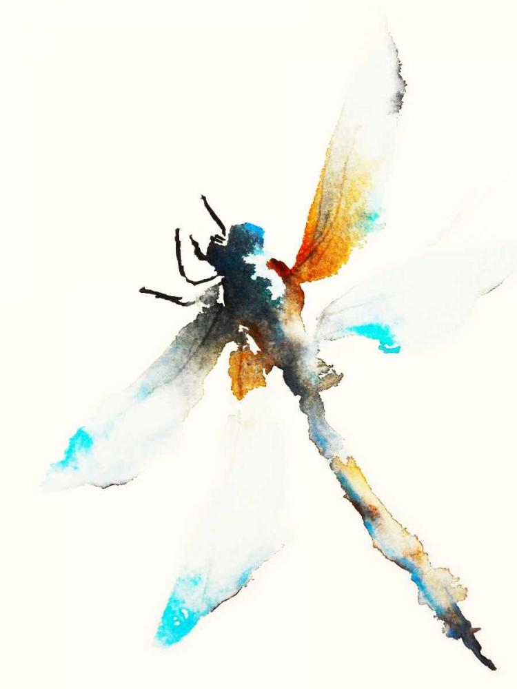 konfigurieren des Kunstdrucks in Wunschgröße Blue and Brown Dragonfly von Johannesson, Karin