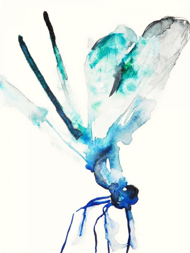 konfigurieren des Kunstdrucks in Wunschgröße Blue and Green Dragonfly von Johannesson, Karin