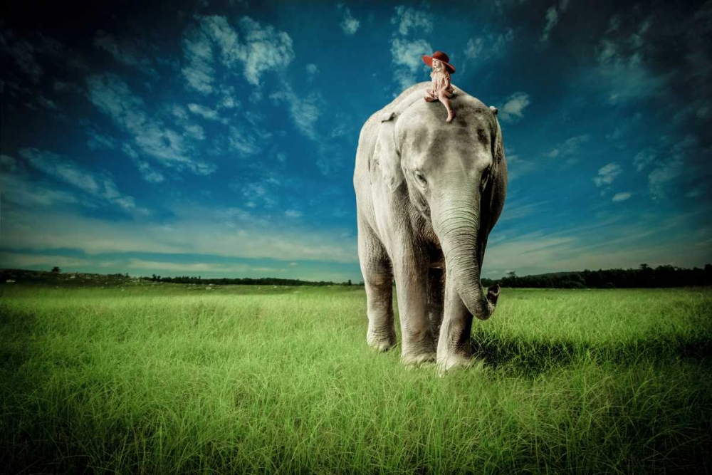 Novelty,Urban/Pop Surrealism,Animals,Children,Elephants,Fantasy,Animals,Children''s Art,Pop Culture,,,M1203D,Elephant Carry Me,Madison, Jeff,Horizontal