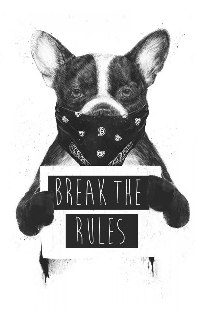 konfigurieren des Kunstdrucks in Wunschgröße Rebel Dog von Solti, Balazs