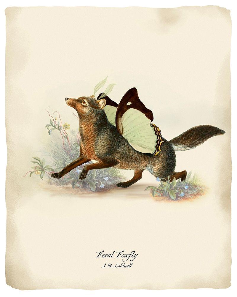 konfigurieren des Kunstdrucks in Wunschgröße Foxfly von Tannehill, Angela