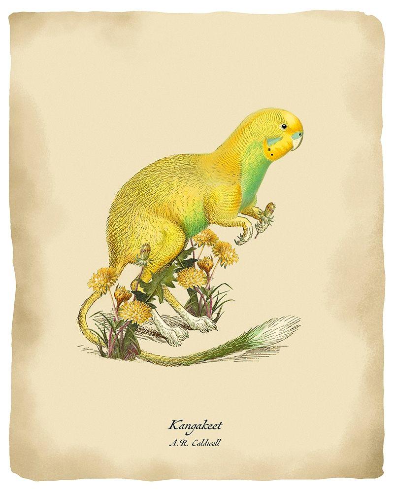konfigurieren des Kunstdrucks in Wunschgröße Kangakeet von Tannehill, Angela