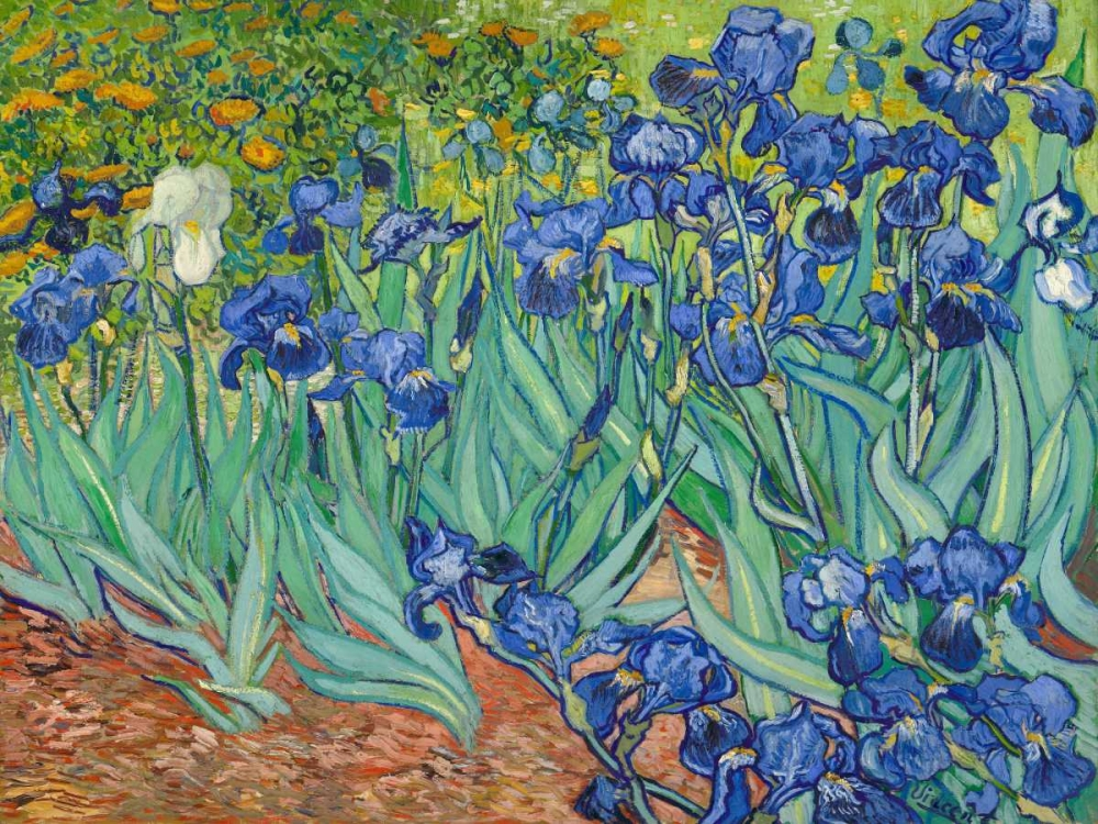 konfigurieren des Kunstdrucks in Wunschgröße Irises 1889 von Van Gogh, Vincent