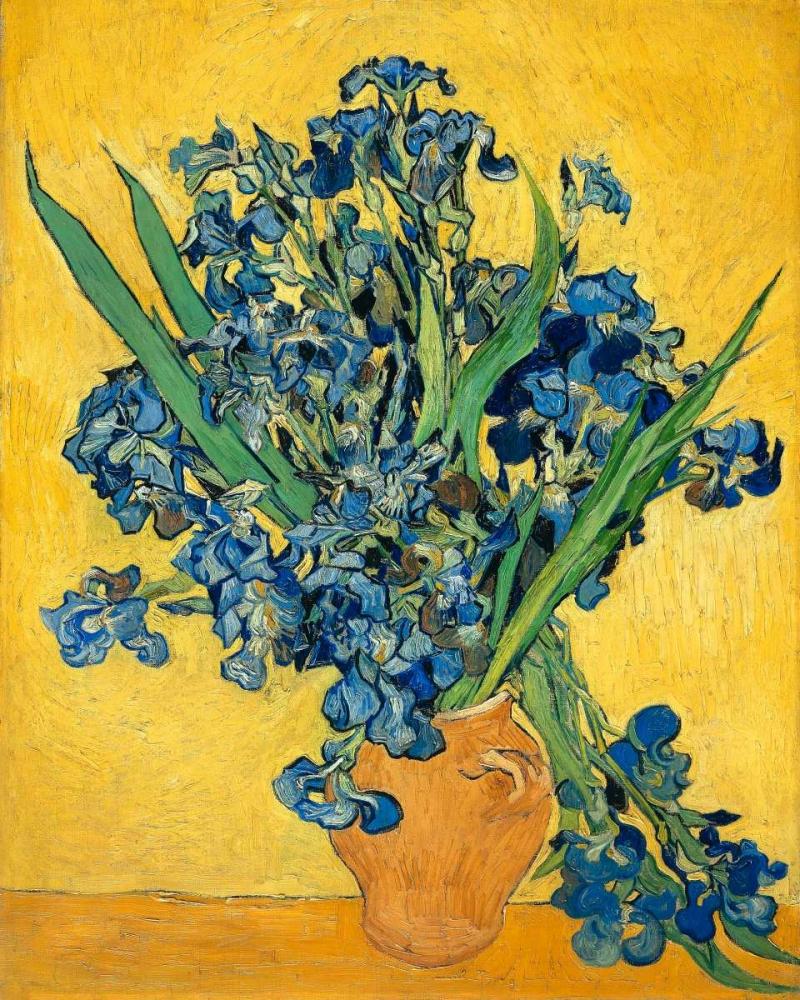 konfigurieren des Kunstdrucks in Wunschgröße Irises 1890 von Van Gogh, Vincent