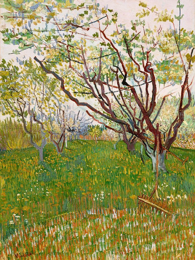 konfigurieren des Kunstdrucks in Wunschgröße Van Gogh, VincentThe Flowering Orchard von Van Gogh, Vincent