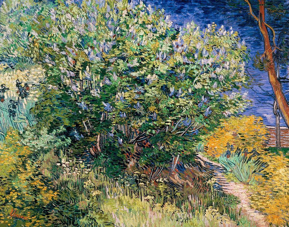 konfigurieren des Kunstdrucks in Wunschgröße Lilac Bush von Van Gogh, Vincent