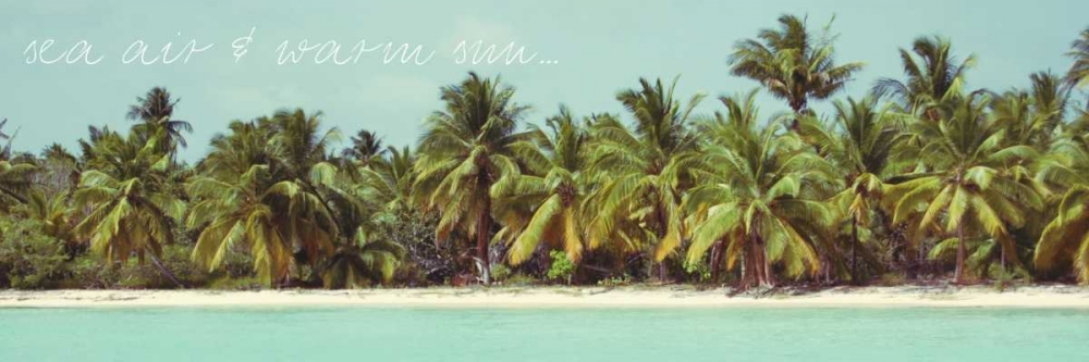 konfigurieren des Kunstdrucks in Wunschgröße Palms Galore I von Acosta