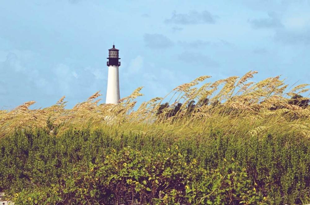 konfigurieren des Kunstdrucks in Wunschgröße Lighthouse View von Peck, Gail
