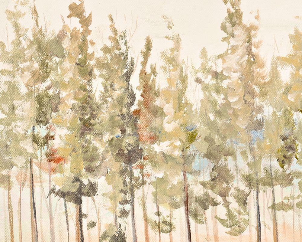 konfigurieren des Kunstdrucks in Wunschgröße Bosque Verde Brisa I von Pinto, Patricia