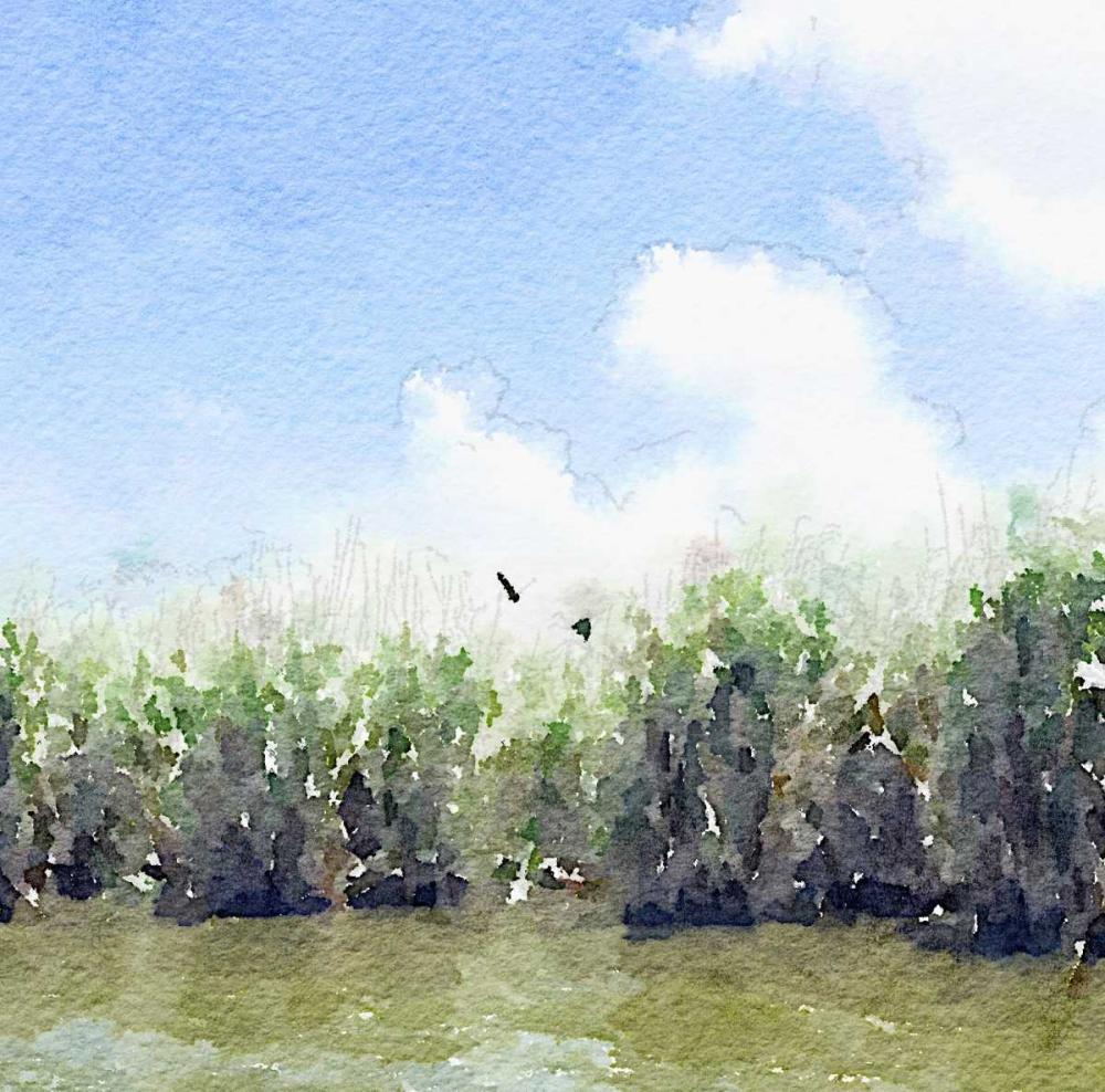konfigurieren des Kunstdrucks in Wunschgröße Watercolor Black Hammock Lake von James, Nola