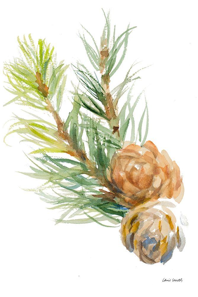 konfigurieren des Kunstdrucks in Wunschgröße Spruce Branches and Two Cones von Loreth, Lanie