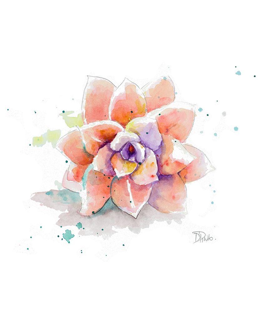 konfigurieren des Kunstdrucks in Wunschgröße Peach Succulent von Pinto, Patricia