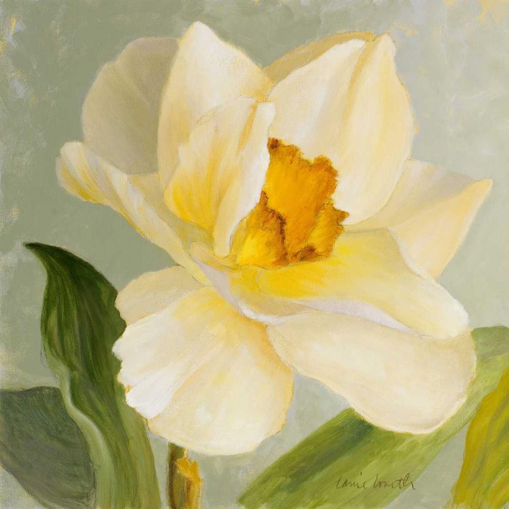 konfigurieren des Kunstdrucks in Wunschgröße Daffodil Sky I von Loreth, Lanie